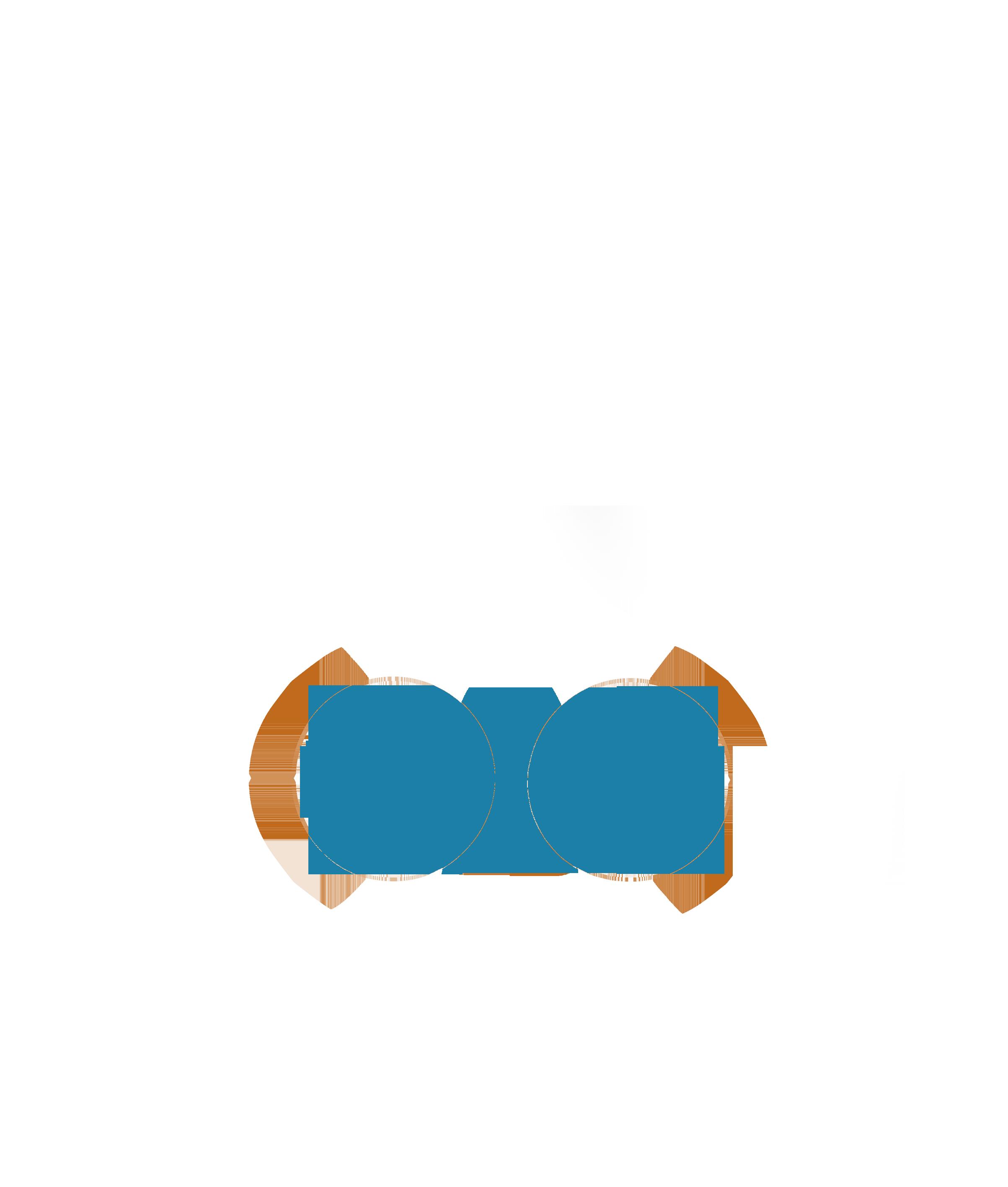 bdweblogoblu